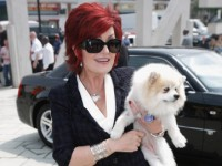 Sharon Osbourne loves JCLA for her dog
