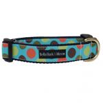 Blue Wonder Collar & Leash