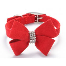 Collars/ Harnesses/ Leads/Shoes