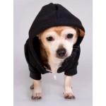 Fleece Pet Hoodie