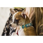 Italian Leather Swarovski Collar
