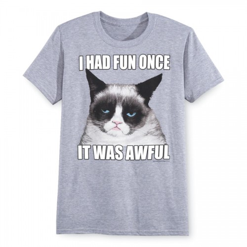 I Had Fun Once. Grumpy Cat Tee