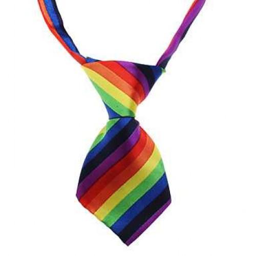 Rainbow Pet Tie